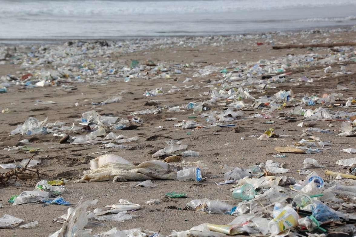 האשפה המצטברת על החופים פוגעת בבעלי חיים ובצמחים ואף בנו- צילום- H. Hach