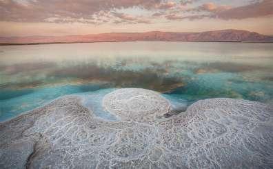 מלאכים במימי ים המלח - אם לא האדם, אולי הטבע יציל את עצמו מאיתנו (2007) צילם דורון ניסים