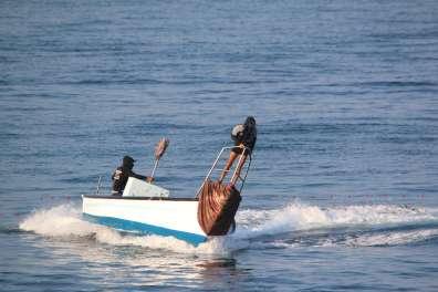 דיג לא חוקי