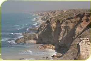 גלישת כורכר רצינית בחופי הים התיכון