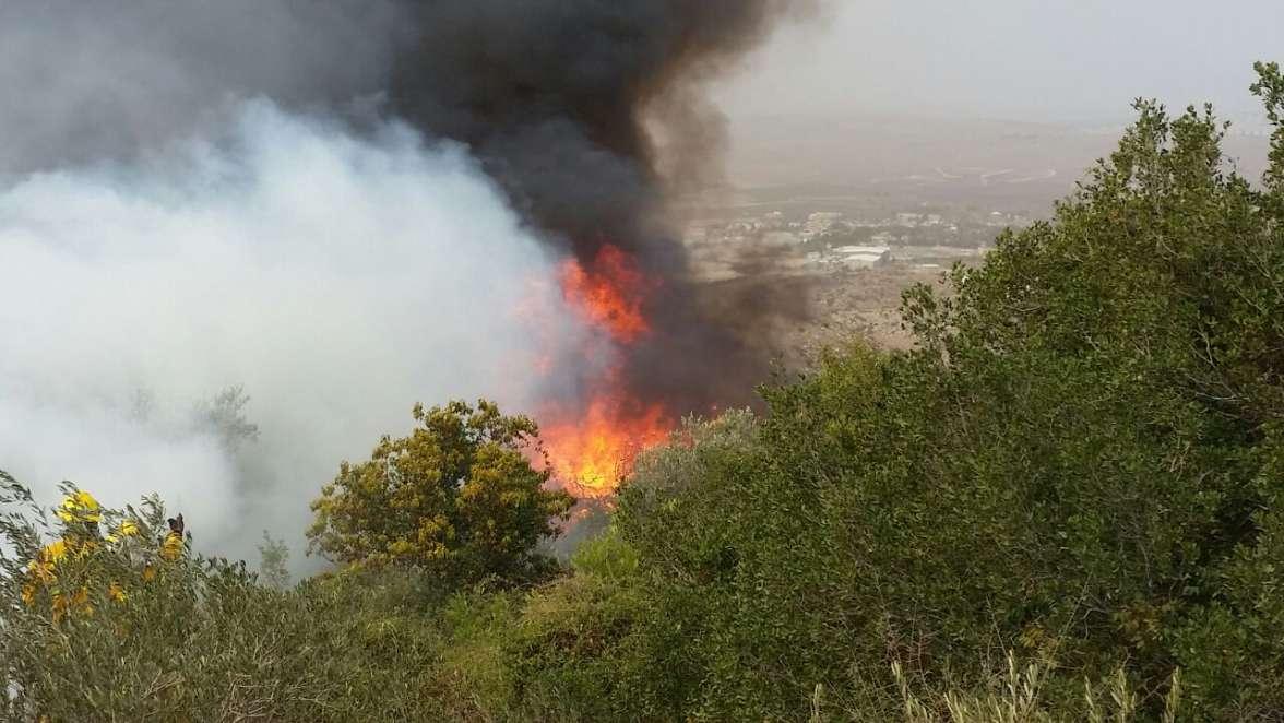 שריפה באזור נטף - צילם ליעד כהן, רשות הטבע והגנים