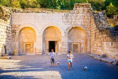 מטיילים עם כלבים בגן לאומי בית שערים