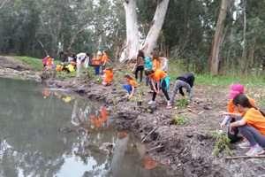 ילדים משקמים את נחל נעמן במסגרת פרוייקט שומרי הנחל - צילמה רחל אשכול