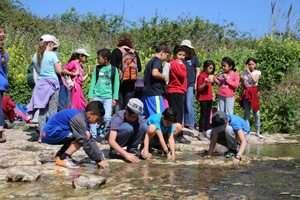 ילדים יהודים וערבים בפעילות אקולוגית משותפת בשמורת טבע נחל תנינים