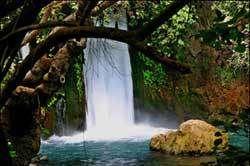 שמורת טבע בניאס, צילום: דורון ניסים