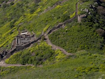 השביל היורד אל גמלא העתיקה בשמורת טבע גמלא בגולן. שביל הטיול המתפתל בלב הנוף הוא הדרך היעילה, המעניינת והמהנה ביותר להתמזג עם הטבע הפראי שבשוליו. צילום: דורון ניסים