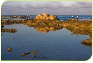 חוף אכזיב - צילם דורון ניסים