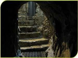 מעין הגיחון בעיר דוד - צילם אסף אברהם
