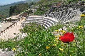 תיאטרון גן לאומי ציפורי