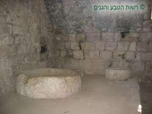 בית בד בתוך מבנה המצודה בגן לאומי עין חמד