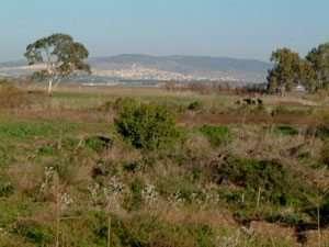 מישור והרים בתצפית מהתל בעין אפק