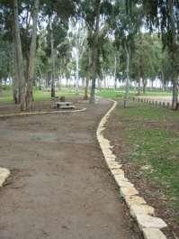 מתקני פיקניק בחורשה בגן לאומי ירקון