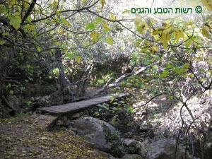גשרון מעל ערוץ נחל מירון