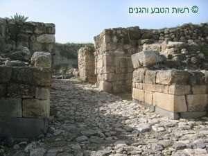 שרידי השער הכנעני במגידו
