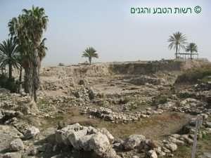 שרידי עתיקות ללא שחזור בפסגת תל מגידו
