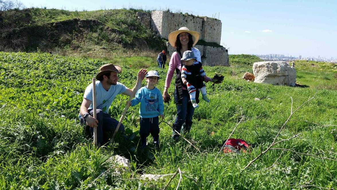 התנדבות משפחתית בגן לאומי מגדל צדק - שתילת פקעות פרחים