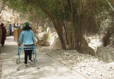 שביל מונגש בשמורת טבע עין גדי