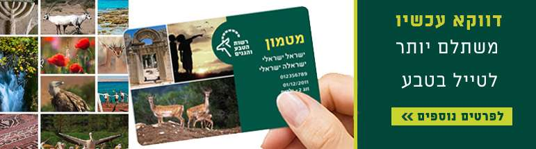 דווקה עכשיו משתלם יותר לטייל בטבע הישראלי