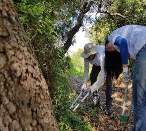 מתנדבים גוזמים עשבים שוטים