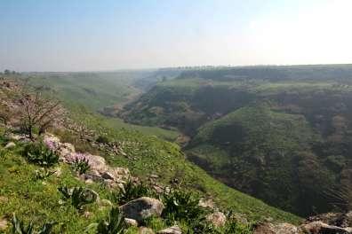 מבט אל נחל אל על ממתחם ג'ידיא (קצר ברדוויל). צילום: יעקב שקולניק