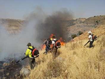 םקחים מכבים שריפה בשמורת טבע גמלא- עידו שקד רטג