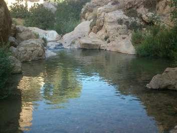 בריכה בנחל פרת - צילם מרדכי לאש