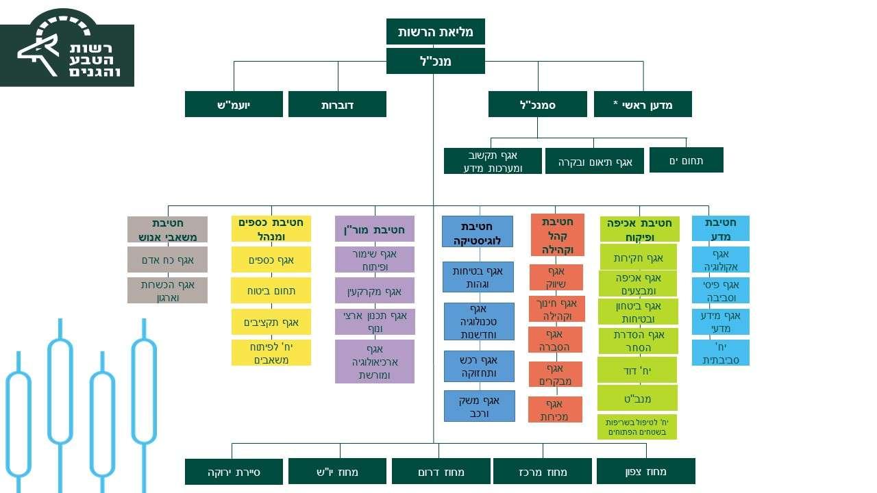 מבנה ארגוני מעודכן מאי 2020