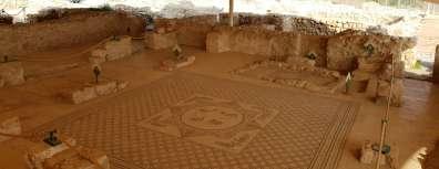 פסיפס עתיקות עין גדי - אריה ברטי