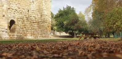מבצר עין חמד צילם דרור ברון