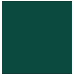 אייקון מטוס